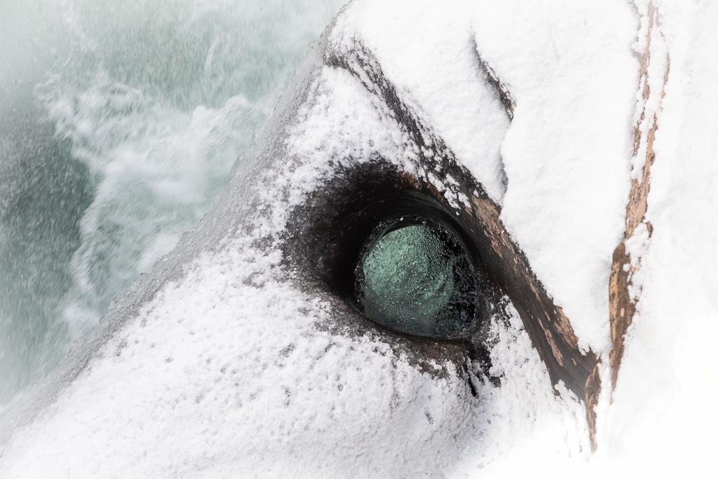 Vinner månedens bilde i januar. Foto: Elisabeth Paulsen. Tittel: The eye