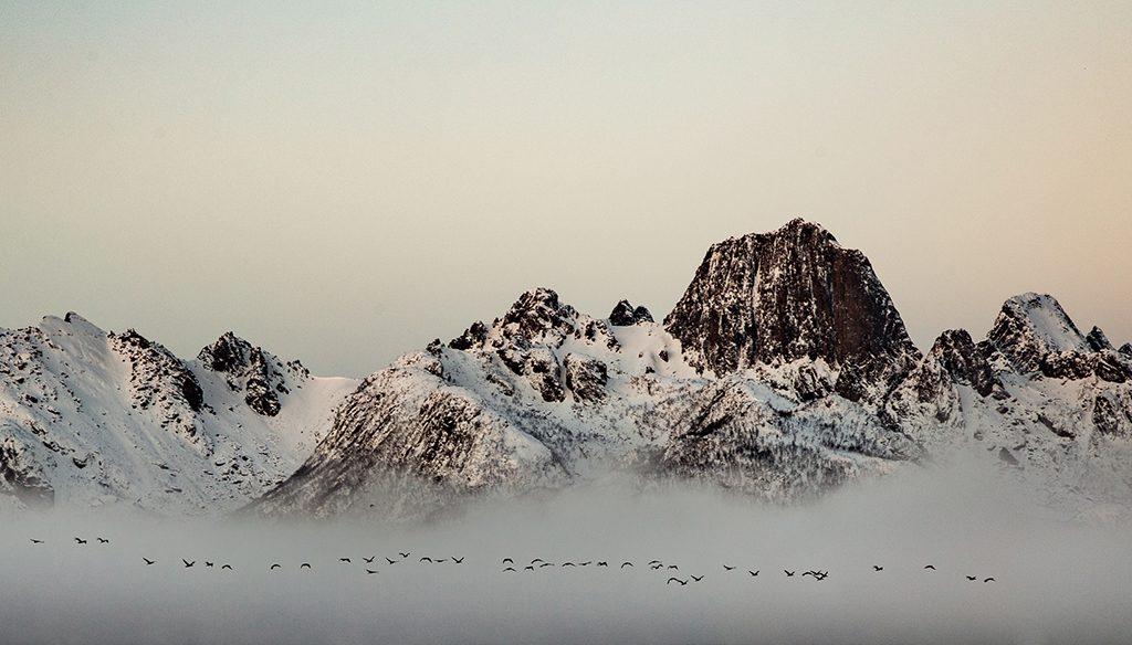 Vinner månedens bilde i februar. Foto: Kenneth Bjørkén. Tittel: Early morning flight